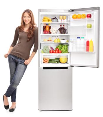 Kühlschrank Basics