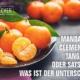 Mandarinenarten